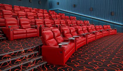 Commercial Movie Auditorium Seatup